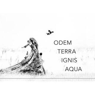 Gedichte19 - Lyrikband I / Odem, Terra, Ignis, Aqua